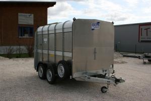 Ifor Williams Viehanhänger TA5 G10x6 mit Rampen- Türkombination und einer Querabtrennung, 3.030 x 1.560 mm, Innenhöhe 1.830 mm, 3.500 kg Anhängerpark Salzburg