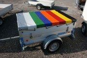 Flachplane 8-färbig als Muster für unseren Mietpark